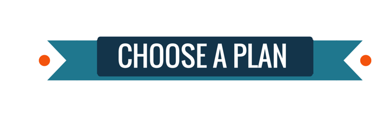 Choose a Business Plan that Suits you